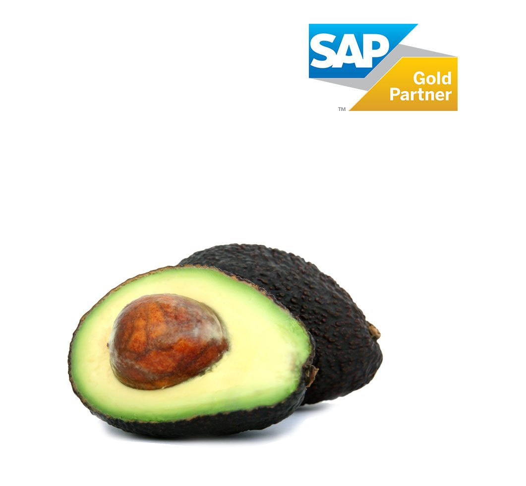 aguacate-banner